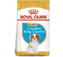 Royal Canin BREED Cavalier King Charles Junior 1,5kg