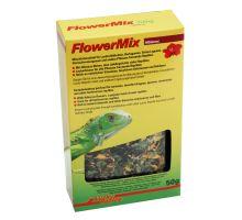 Lucky Reptile Flower Mix - ibištek
