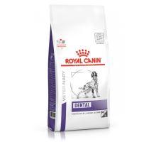 Royal Canin VD Canine Dental 6kg
