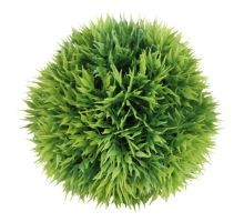 Dekoratívna rastlina MECH 9 cm
