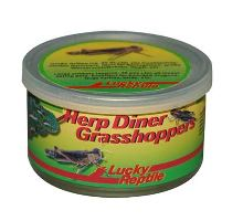 Lucky Reptile Herp Diner sarančata - cca 50 středních
